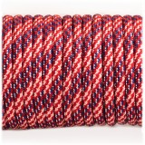 Paracord Type III 550, Dutch Pride  #398